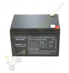 Batterie DJW 12V14Ah de quad et moto électrique