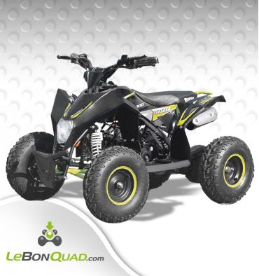 https://www.lebonquad.com/17048-thickbox_default/quad-enfant-lbq-fenix-110-jaune.jpg