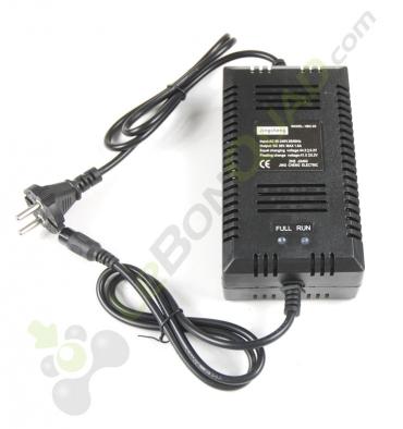 Chargeur de batterie 36V de quad et moto électrique - Quad enfant