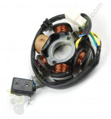 Stator allumage moteur démarreur électrique de Quad 110