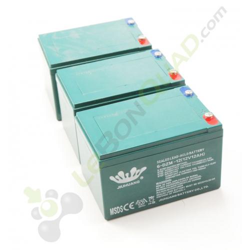 Pack 3 batterie 6-DZM-12 12V12Ah de quad pocket électrique E-Rex - Quad enfant
