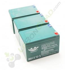 Pack 3 batterie 6-DZM-12 12V12Ah de quad électrique