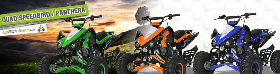 Quad Speedbird / Panthera - Quad enfant